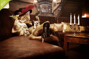 cat artwork photoshop pussinboots