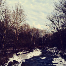 creek winter cold ice frozen
