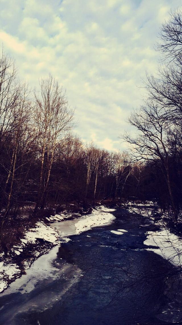 #creek #winter #cold #ice #frozen #blueksky #woods #snow #indiana