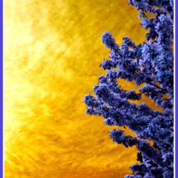 SUNtag clouds BEAUTIFYPICSART BeautifyPicsArt lessismore