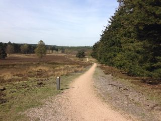 noedit nature path natuur nederland