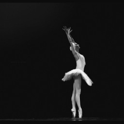 ballerina performingarts dance ballet blackandwhite