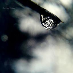 nature rain