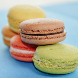 wppprimarycolors macaron sweet colorful food