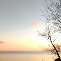 wapwave sunsetsilhouette wppnaturallight wppsunnyday