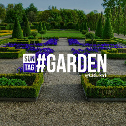 garden green outdoor
