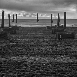 beach blackandwhite italy caorle beachumbrellas