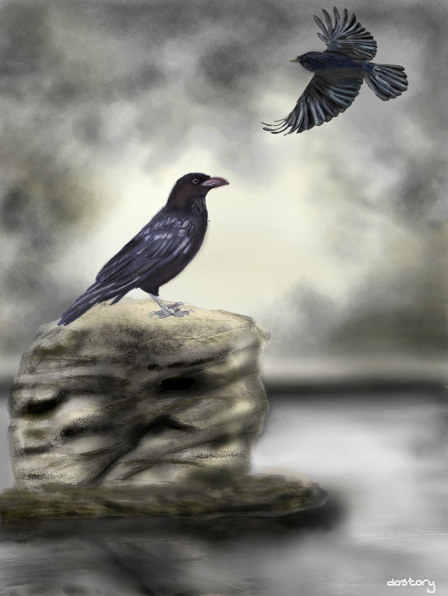 #drawing #petsandanimals  #raven for my son , he wanted a drawing with a raven :-)