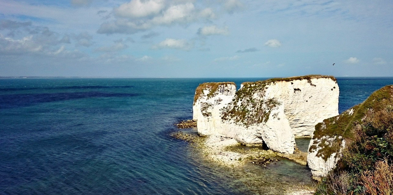 Old Harry Rocks  #wppvacation #nature #photography #summer #colorful #sea