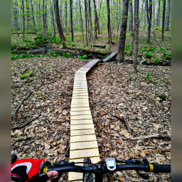 repeating mountainbike boards path trail