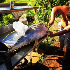 fishing hawaii