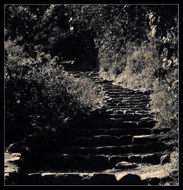 #black & white #stairs #fort #lohgarh #upwards #interesting #hdr #nature #travel