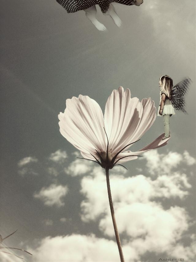 #waplevitate #kid   #photography #people #nature #weird #fairy #fly #flo #flower #cool #twist  #feet