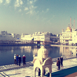 Highlights crossproc2 photography golden temple india Reflection water white people q quotesandsayings morningview travel holidays summer Beautiful blessing god awesome love freetoedit