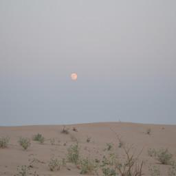 dubai desert desertsafari fun photography